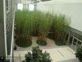 Artificial de bambú cerca para la decoración del jardín/artificial de la hoja de la cerca