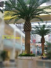 GuangZhou SJ phoenix canariensis palms/artificial date palm trees