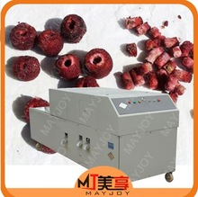 olive pit extracting machine / plum pit remove machine /seed removing machine