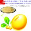 Manufacturer sales soybean extract daidzein