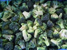 Frozen IQF Broccoli floret