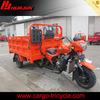 electric tricycle bike/three wheeler cng auto rickshaw/3 wheel trike bike