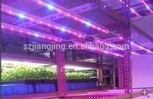 2012 best quality led grow light 36W waterproof 3 years warranty