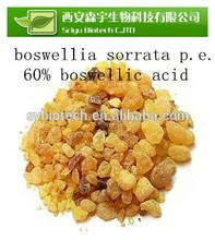 natural frankincense extract , Frankincense/Olibanum/Mastic Extract Boswellic Acid 65%