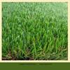 public green artificial grass Italy