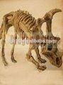 2014 esqueleto de la escultura de los animales fósiles de dinosaurio de la fábrica