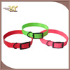 """Dog collar - 3/4"""" wide - terrier / whippet /puppy - pet / hunting -green"""