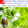 Manufacturer sales ginkgo biloba extract tablet