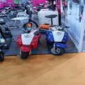250w électrique scooter electrique/trotinette electrique 1000w par cher