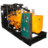 Googol Nature or Bio Gas Operated Electric Generators