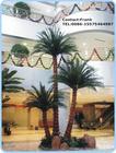 indoor outdoor palm tree wedding decorations