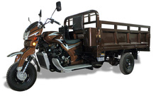 Three Wheel Covered Motorcycle Twin Tricycle Scooters Cargo Tricycle