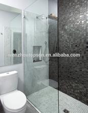 Frameless Hinged Shower Door & bath screen