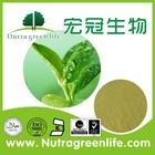 high quality tea Polyphenol Water Soluble