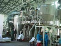 Food salt processing machine