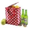 lastest design wine cooler bag /wine bottle gel cooler bag /ice bag for wine