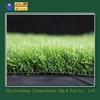 child playground pretty grass