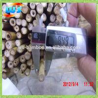 Bamboo Raw Materials/Garden use bamboo cane 75cm/8-10mm