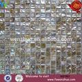 Colore naturale conchiglia mosaici/conchiglia mattonelle di mosaico shell mosaico