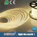 su geçirmez smd led şerit ışık 5050 led şerit ışıklar