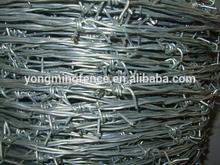 iron barbed wire mesh/barbed galvanized wire