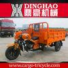 Three Wheel Tricycle Gasoline Engine/auto rickshaw parts