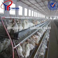 galvanizing line equipment for chicken layers