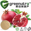High quality punicalagin pomegranate peel extract