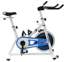 Lifecharging Exercise Cycle spinning bike