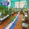 Garden Net for Malaysia,Plastic Garden Fencing,Garden Net,Plastic Safety Fencing Net