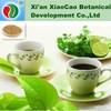 Decaffeinated Green Tea Extract Powder,Matcha Green Tea Extract,Green Tea Extract Polyphenol