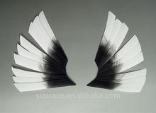 Arrow turkey feather