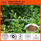 BNP Sells vine tea extract powder 98% dihydromyricetin