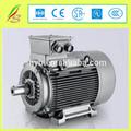 Iyi fiyat motor elektrik/elektrik motoru