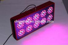 High intensity full spectrum appollo 10 led plant light