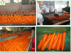 Import and export of carrots
