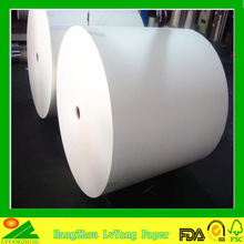 China Higher quality 1 side or 2 side PE coated cupstock in roll