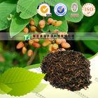 High Grade Chinese Herb Medicine Acacia catechu