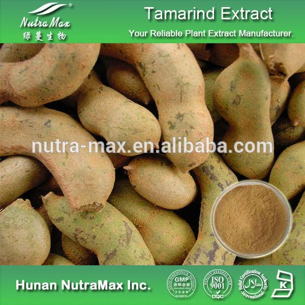 Tamarindus Indica Extract Indica Extract,tamarindus