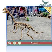2014 Hot selling! Theme park professional dinosaur skeleton exhibition