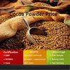 GMP Extract Company Supply Alkalized Cocoa Powder