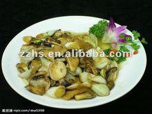 Canned Mix Mushroom in Brine Best Canned mushroom