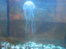 Artificial Silicone Vivid Jellyfish For Fish Aquarium Decor