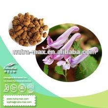 100% Natural Rhizoma Corydalis p.e/Rhizoma Corydalis extract powder 10097-84-4 Tetrahydropalmatine CAS# 2934-94-6