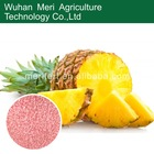 water soluble fertilizer for pineapple npk 14-4-40+TE