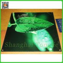 Eco Solvent Digital Printing Flex Face Banner Printing Service