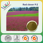 China manufacturer supply 100% natural top quality red clover extract biochanin a
