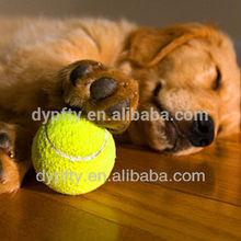 Tennis Balls Toys for Pet