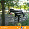 Wholesale Galvanized Pipe Horse Fence Panels/Horse paddock fence
