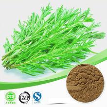 pure nature 10% 60% Rosmarinus officinalis extract Carnosic acid